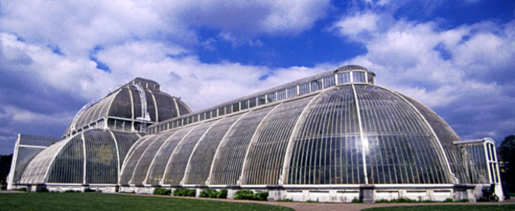 Green-House-2